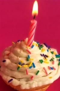 birthday party dj wisconsin